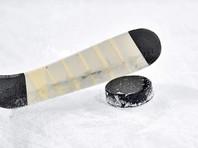 КХЛ решила не определять победителя досрочно завершенного сезона