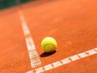 Розыгрыши Кубка Дэвиса и Кубка Федерации по теннису перенесены на 2021 год