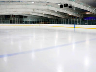 Борцы с расизмом в хоккее требуют от НХЛ перекрасить синюю линию в черный цвет