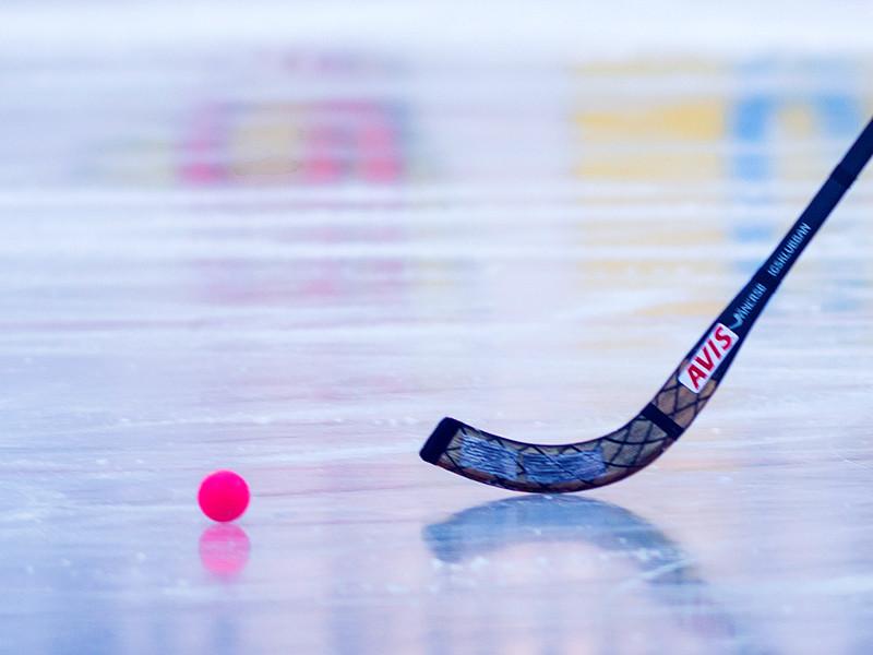 Шведы отказались лететь в Иркутск на чемпионат мира по хоккею с мячом