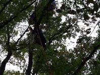 В тот же день 13 сентября в Бахчисарайском районе парапланерист потерял управление парапланом и завис на кронах деревьев в 10 метрах от поверхности земли