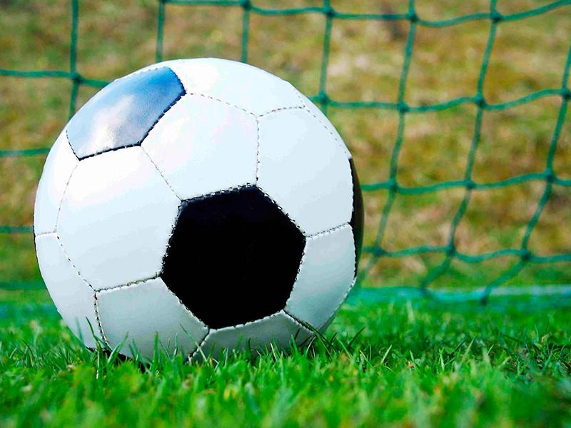 Футбольный матч между Россией и Швецией перенесли из Стокгольма в Москву
