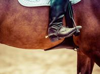 Американский наездник более года подгонял своих коней электрошпорами