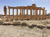 """Российские художники-баталисты побывали в Сирии, чтобы сохранить Пальмиру """"на века"""""""