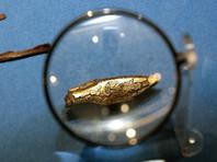 Представители музеев Крыма намерены 5 октября 2016 года лично доказать в суде Амстердама, что золото скифов принадлежит полуострову