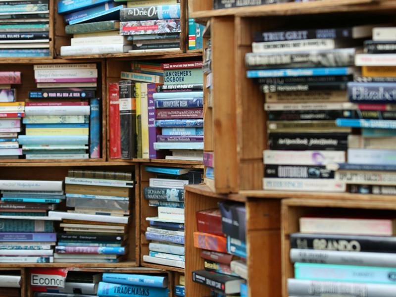 Бельгийцы охотятся за книгами вместо покемонов