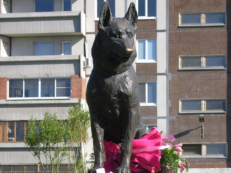 """В 2002 году Костя умер, а на окраине Автозаводского района Тольятти появилась скульптура овчарке с надписью """"Псу, научившему нас любви и преданности"""""""