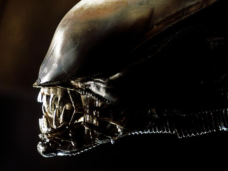"""По сюжету, экипаж корабля """"Завет"""" обнаруживает планету, которая, как они думают, является неизведанным """"Раем"""". На самом деле это темный и опасный мир, где живет андроид Дэвид, выживший в экспедиции """"Прометея"""". Андроид вместе с экипажем """"Завета"""" исследует планету"""