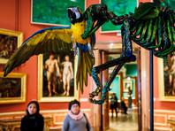 Минкульт дистанцировался от выставки с трупами животных в Эрмитаже