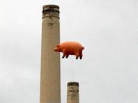 Надувные свиньи Pink Floyd закроют имя Трампа на небоскребе в Чигкаго ради утешения американцев