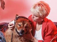 Шотландские ученые вычислили музыкальные предпочтения собак