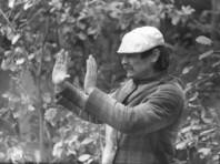 """Режиссер фильма """"На игле"""" считает Тарковского  """"кинематографическим богом"""""""
