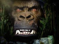 """Во Вьетнаме на премьере фильма """"Конг: остров черепа"""" случайно сожгли гигантскую обезьяну (ВИДЕО)"""