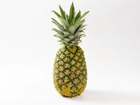 В Шотландии студенты выдали ананас  за арт-объект на выставке современного искусства