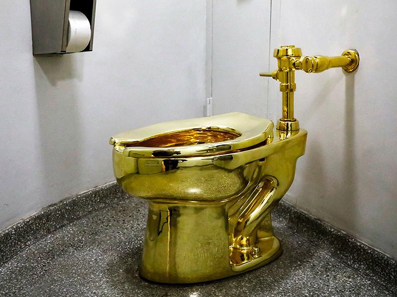 Дональд Трамп получил саркастический ответ от нью-йоркского музея Гуггенхайма на свою просьбу предоставить картину Ван Гона в аренду для оформления личных покоев. Музейный куратор Нэнси Спектор решительно отказала президенту США в прокате шедевра и предложила вместо этого забрать из музея унитаз, покрытый 18-каратным золотом