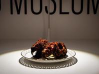 """В Швеции откроют """"Музей отвратительной еды"""" с жареными морскими свинками, бычьим пенисом и дурианом"""