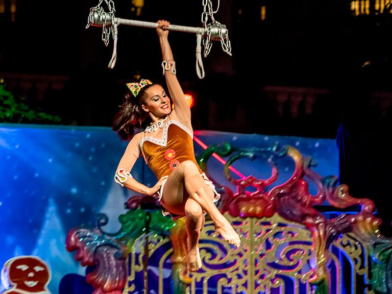 Cirque Du Soleil оказался на грани банкротства из-за отмены шоу в условиях пандемии