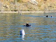 """В США в ходе поисковой операции найдено тело звезды сериала Glee (""""Хор"""") Наи Риверы, которая пропала без вести во время прогулки по озеру на прошлой неделе"""