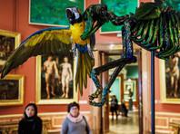 В РПЦ оценили выставку Фабра в Эрмитаже: там нет места ни богу, ни человеку