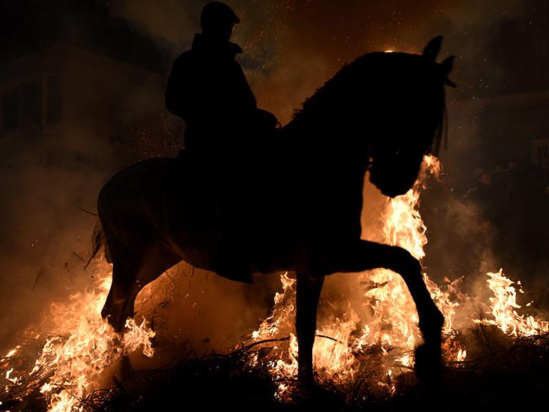 """В Испании прошла церемония огненного """"очищения"""" лошадей в честь покровителя домашних животных святого Антония"""