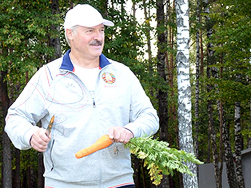 Александр Лукашенко, август 2016 года