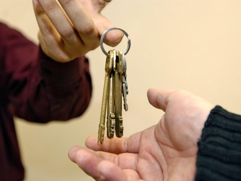 Количество собственников, сдающих жилье в Московском регионе, за год выросло в 1,5 раза
