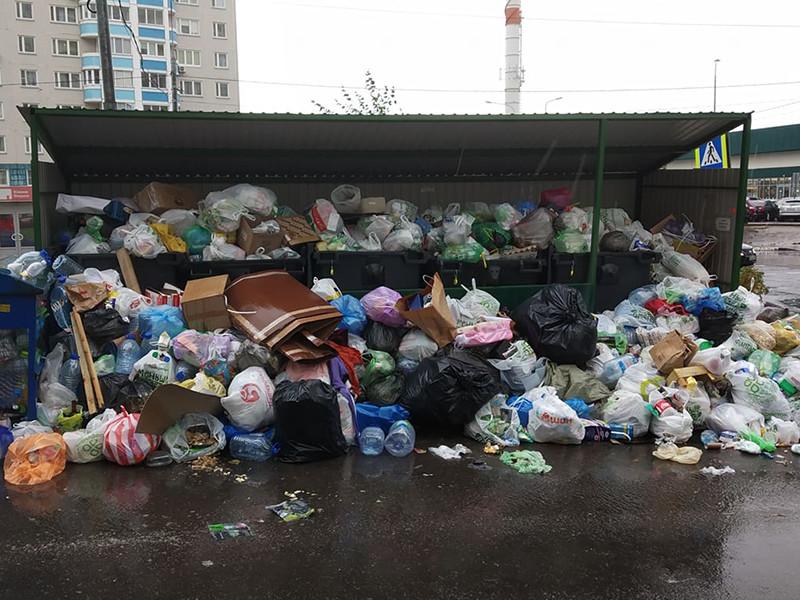 Запущенная в 2019 году мусорная реформа пока что не дала эффекта, и ситуация с мусором в России остается неблагополучной: уровень переработки отходов не превышает 7%, а более 90% мусора по-прежнему направляется на полигоны и свалки