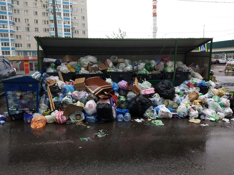 Второй глава оператора мусорной реформы ушел в отставку, не проработав и года