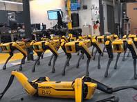 Компания Boston Dynamics начала открытые продажи роботов Spot компаниям из США