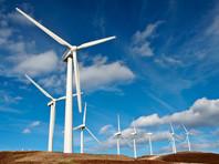 Ученые нашли способ существенно снизить смертность птиц от лопастей ветряных электрогенератов