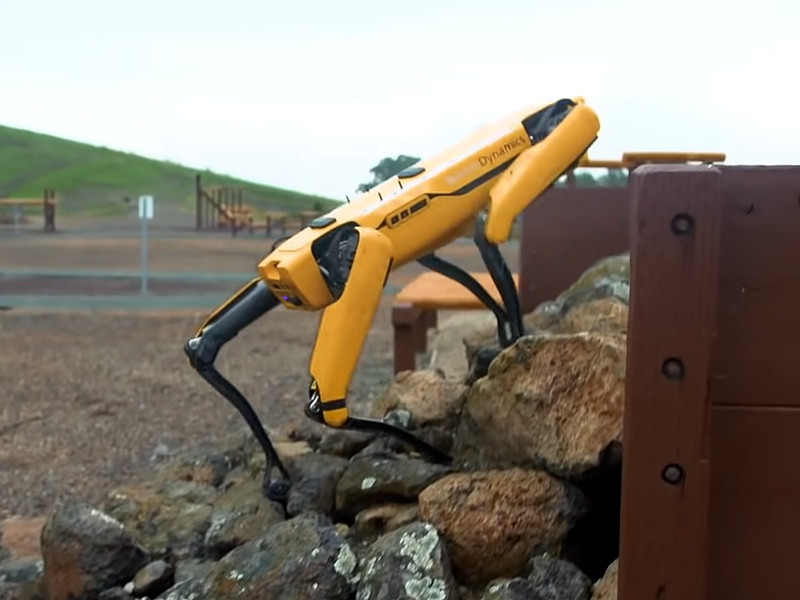 Boston Dynamics начала продажи роботов Spot в Канаде и Европе