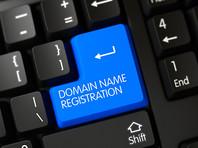 В Минцифры предложили идентифицировать администраторов доменов через портал госуслуг