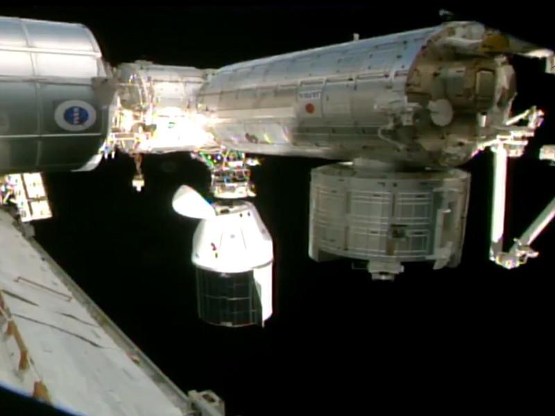 12 января грузовой космический корабль Dragon компании SpaceX, запущенный в начале декабря к Международной космической станции (МКС), покинул станцию, проведя на орбите чуть больше месяца