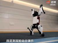 Компания Tencent показала гибридного робота на колесах (ВИДЕО)