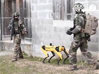 Французская армия протестировала робота Spot на учениях