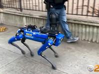 """Полиция Нью-Йорка """"уволила"""" робопса Spot под давлением общественности"""