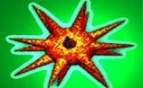 Новая компьютерная зараза:  вирус Magistr.b