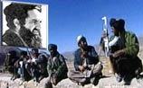 Арест Омара оказался слухом - США вновь начали бомбардировки