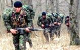 Грузия призналась, что готовится к операции в Абхазии