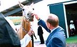 Ниязов подарил Путину ворованного коня