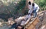 Жертвами резни в Нигерии стали 175 человек