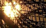 67 заключенных сгорели заживо в тюрьме Саудовской Аравии
