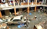 Экологи в замешательстве: из-за цунами не погибло ни одно животное