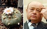 Фрадков поручил спецслужбам начать борьбу с лысыми кактусами