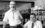 Австралийцы получили премию Нобеля за открытие бактерии