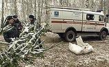 Катастрофа самолета Cessna под Москвой - погибли 8 человек