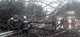 Над Ленинградской областью пронесся сильнейший ураган