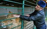 К портрету Кадырова добавили брутальных штрихов: свои львы, игры с гостями, битвы и гонки