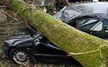 В Европе бушует ураган. Погибли уже 15 человек