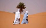 """Ученые предлагают """"разрезать"""" Африку гигантской стеной, чтобы обуздать пустыню"""